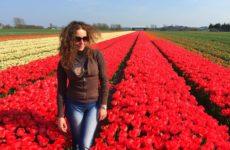 Olanda – Lisse