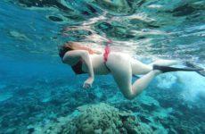 Maldive – (Atollo di Ari)