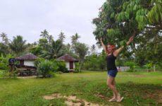 Polinesia Francese, Isole Australi